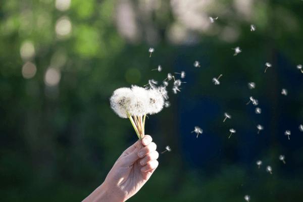 Mindfulness w organizacji – komunikacja w miejscu pracy oparta na współczuciu